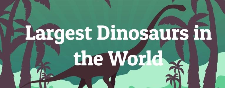 Largest Dinosaurs