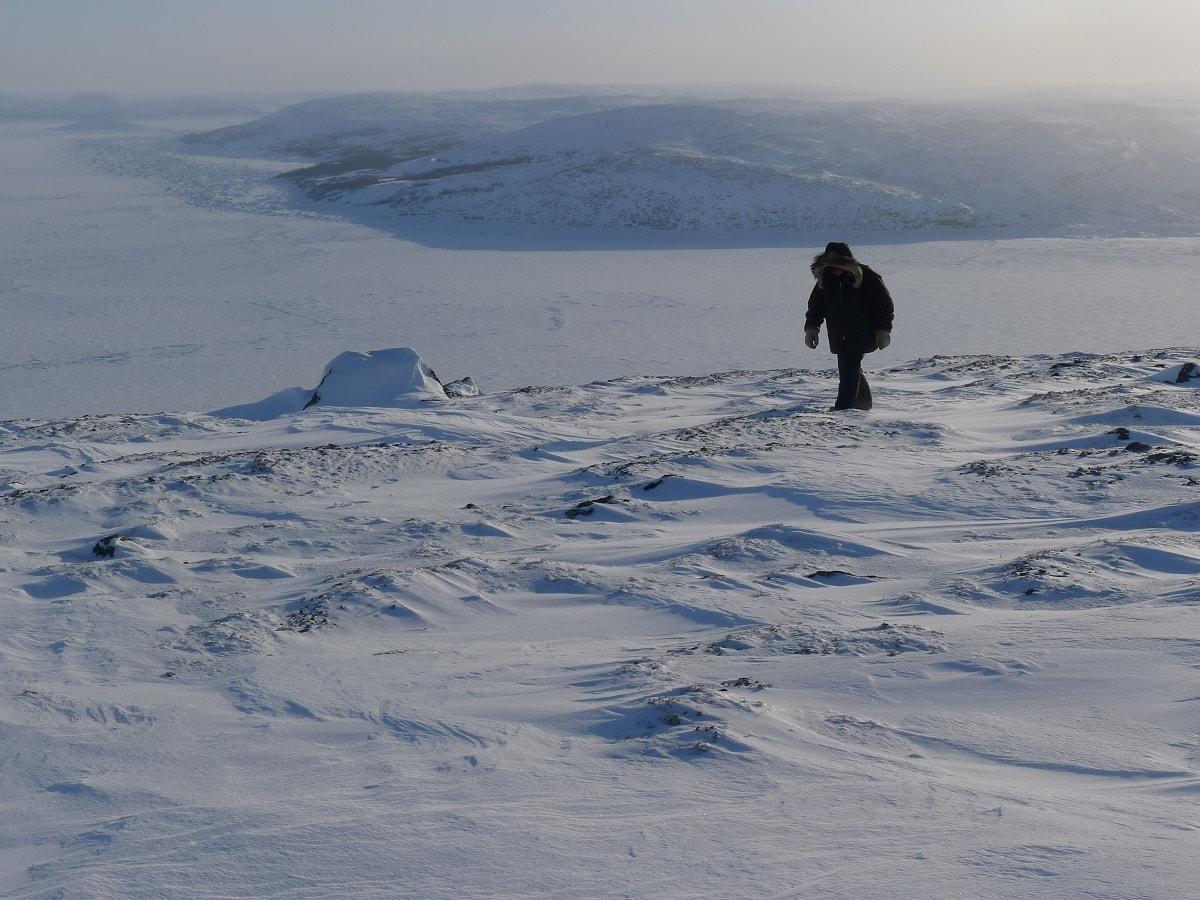 Arctic Polar Desert