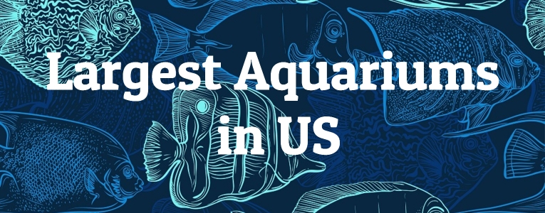 largest-aquariums-us