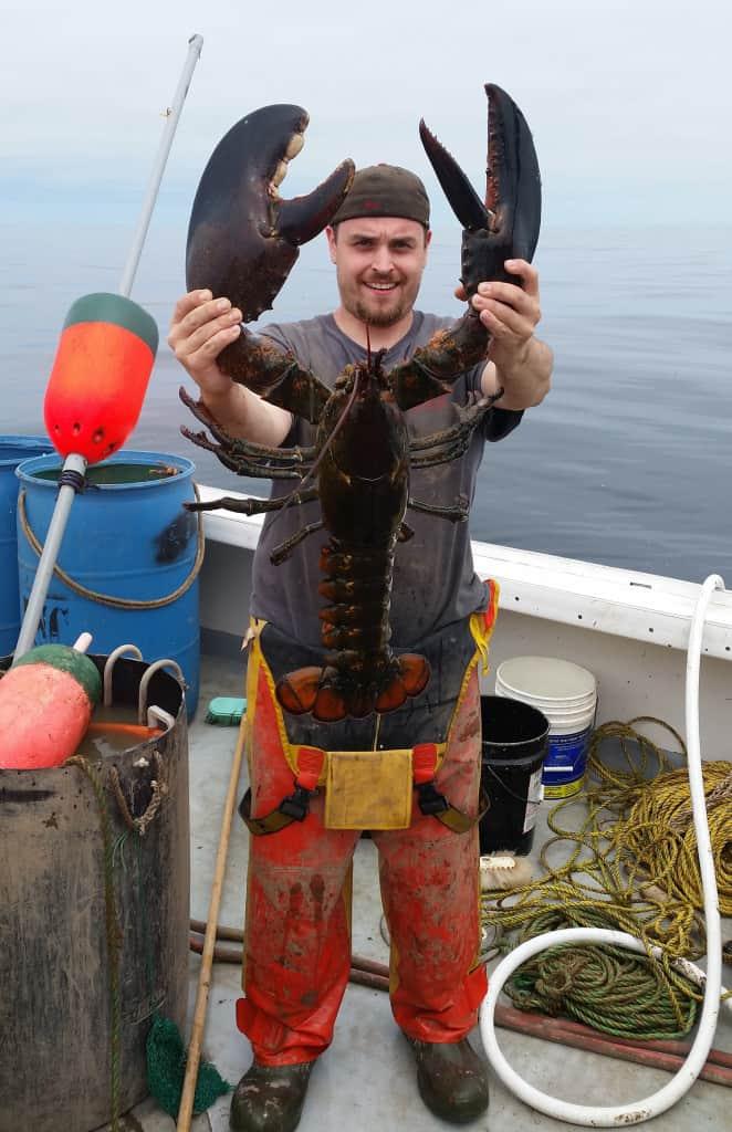 Big Dipper Lobster
