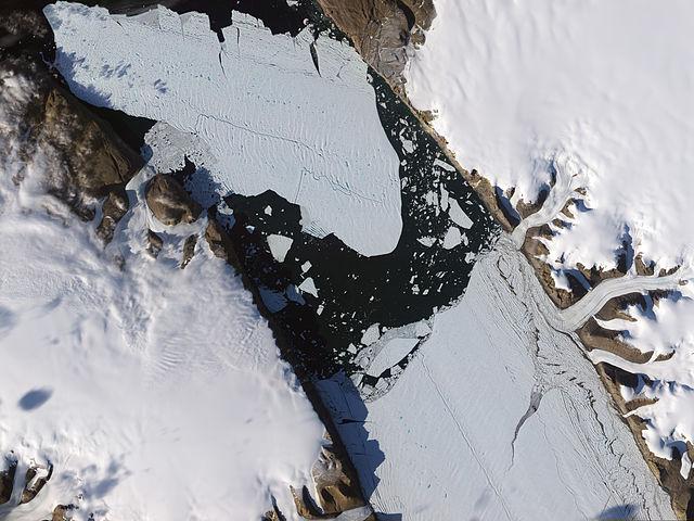 Petermann Glacier Ice Island