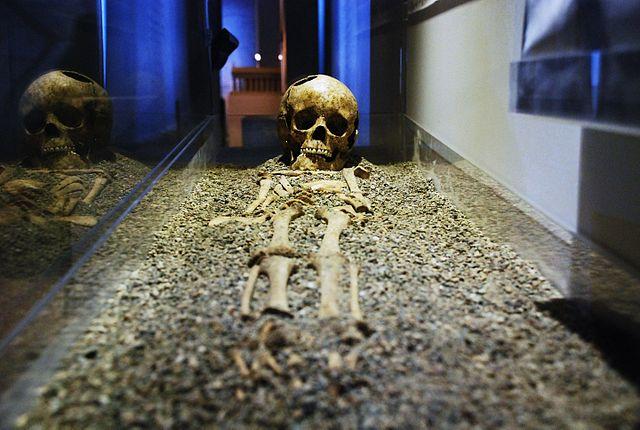 Ancient Roman Skeleton of Fidenae