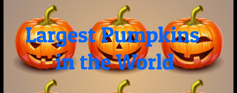 largest-pumpkins