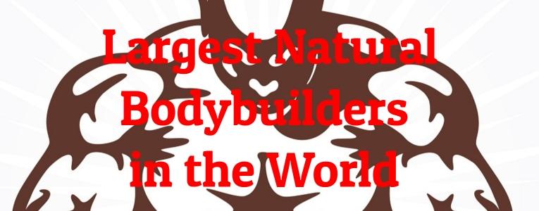 largest-bodybuilders