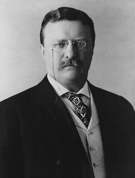 Theodore_Roosevelt_1907