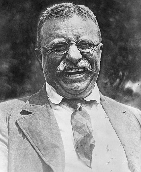 Theodore_Roosevelt_1905