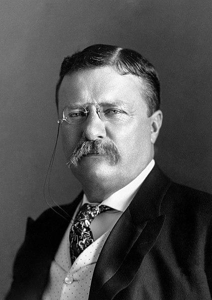 Theodore_Roosevelt_1906