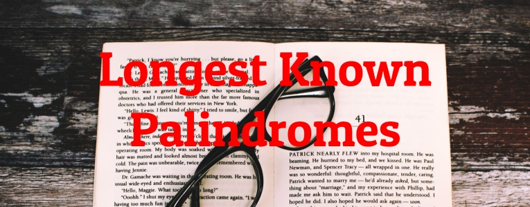 Longest Known Palindromes